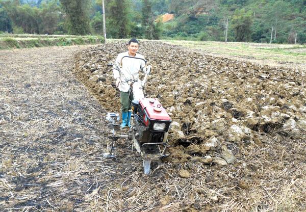 Nông dân chuẩn bị trồng cây thuốc lá vụ xuân năm 2015
